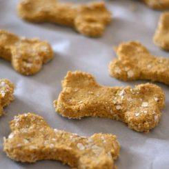 Thức ăn cho thú cưng